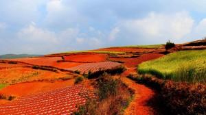 2020十一国内旅游好去处云南东川红土地