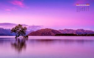 2020年3月一棵树唯美意境写真日历