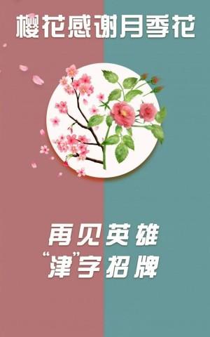 武大樱花感谢月季花