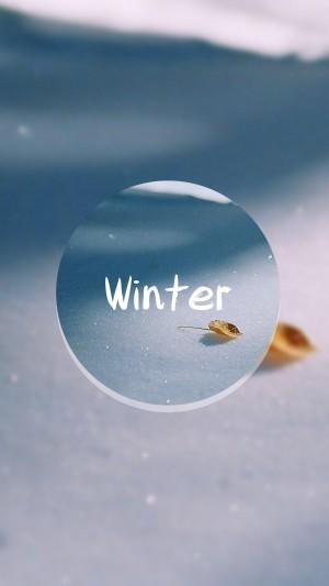 冬季的缩影
