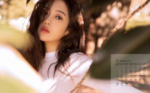 2019年1月王梓薇甜美养眼日历壁纸