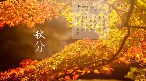 2019年9月秋分枫叶图片日历壁纸