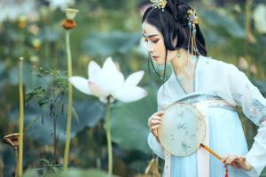 荷花池塘白衣温婉清纯古装美女高清图片