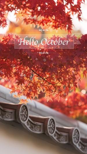 你好,红彤彤的十月