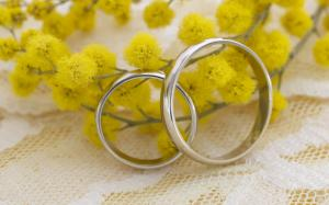 结婚婚戒图片