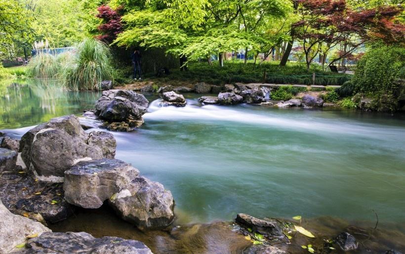 杭州太子湾公园的小溪流写真