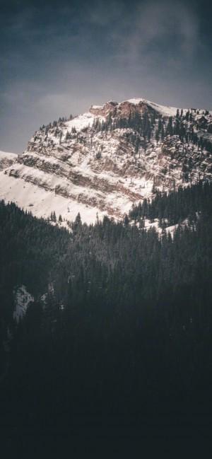 静谧森林唯美景色