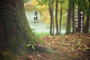 清明节缅怀伤感诗歌文字图片