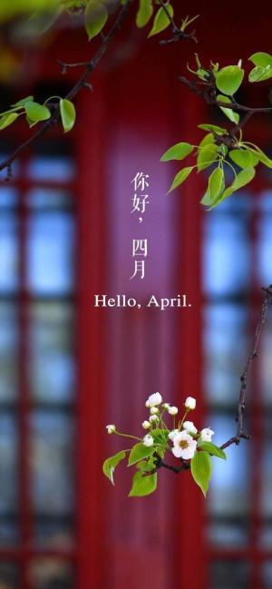 四月你好唯美手机壁纸