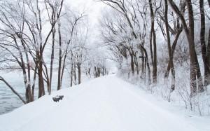 十二月大自然超美雪景风光