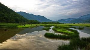 神农架大九湖国家湿地公园秀美高清桌面壁纸