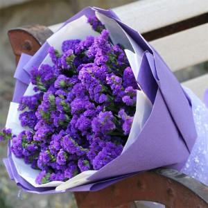 勿忘我清新紫色
