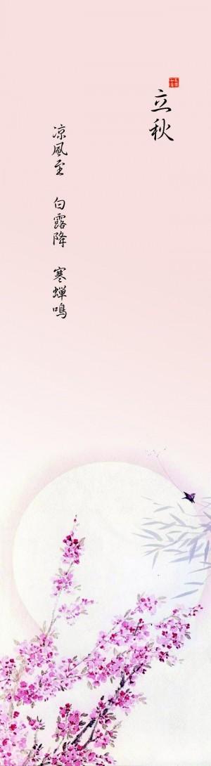 二十四节气之立秋唯美设计图片