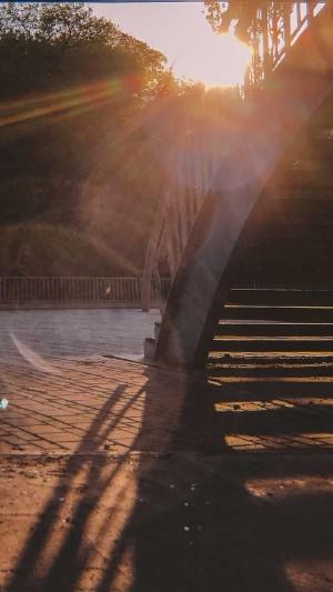 大自然温暖阳光风景图片手机壁纸
