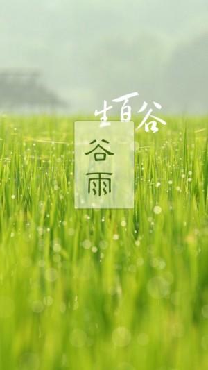 生百谷,谷雨至