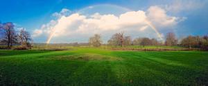 彩虹 蓝色天空 绿色草地 公园 风景壁纸