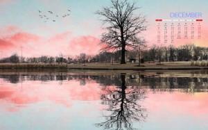2019年12月唯美意境自然风景图片壁纸