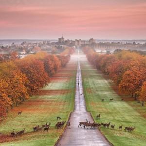英格兰温莎堡童话般的风景