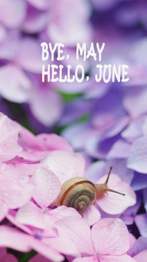 五月再见六月你好唯美梦幻小清新蜗牛花朵图片