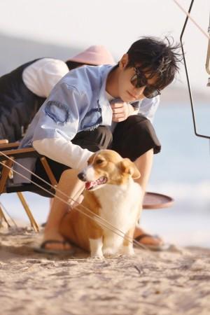 王俊凯海风沙滩阳光美好写真图片
