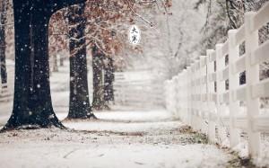 节气大寒治愈雪景图片桌面壁纸