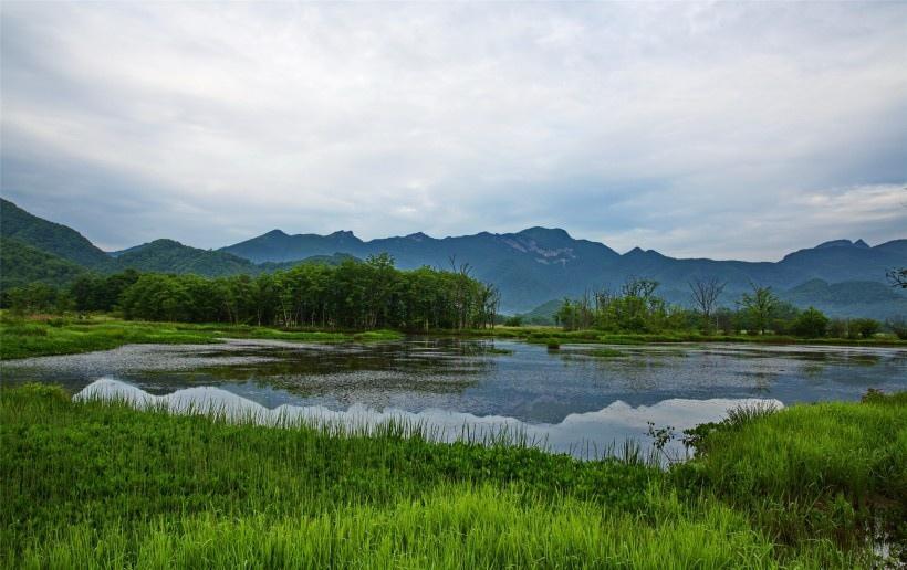 湖北神农架大九湖风景
