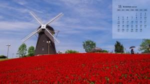 2019年11月荷兰风车唯美风景日历壁纸
