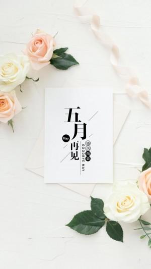 五月再见清新唯美花卉手机壁纸