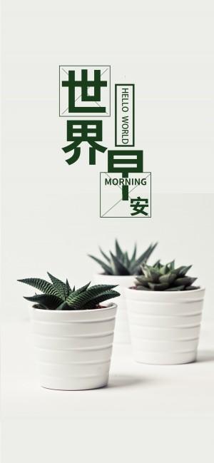 早安世界之小清新盆栽图片