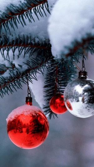 雪松上的圣诞球装饰