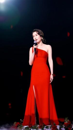 刘敏涛性感鲜红长裙耀眼魅力迷人写真
