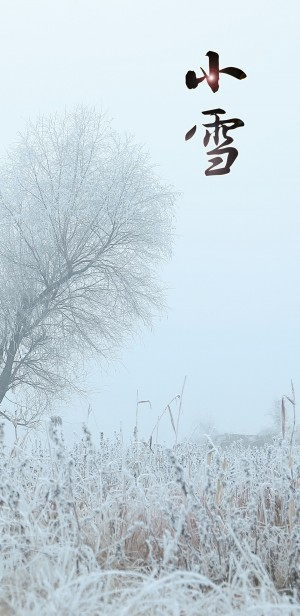 小雪之瑞雪兆丰年