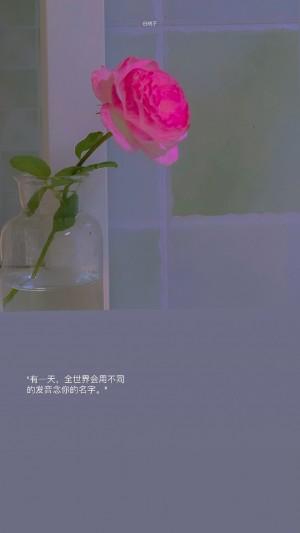 娇艳无比的鲜花