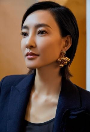 王丽坤卡地亚品牌活动写真