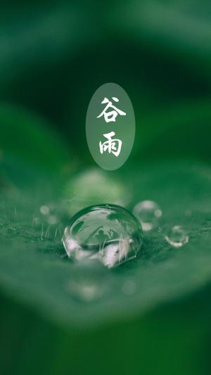 传统二十四节气谷雨