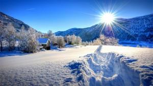 阳光下唯美冬日雪景高清桌面壁纸
