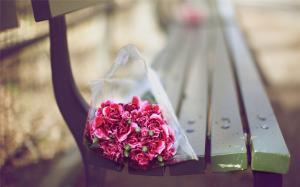一束粉色康乃馨唯美清新桌面壁纸