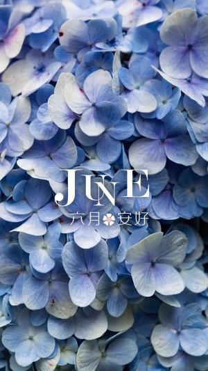 五月已去,六月安好