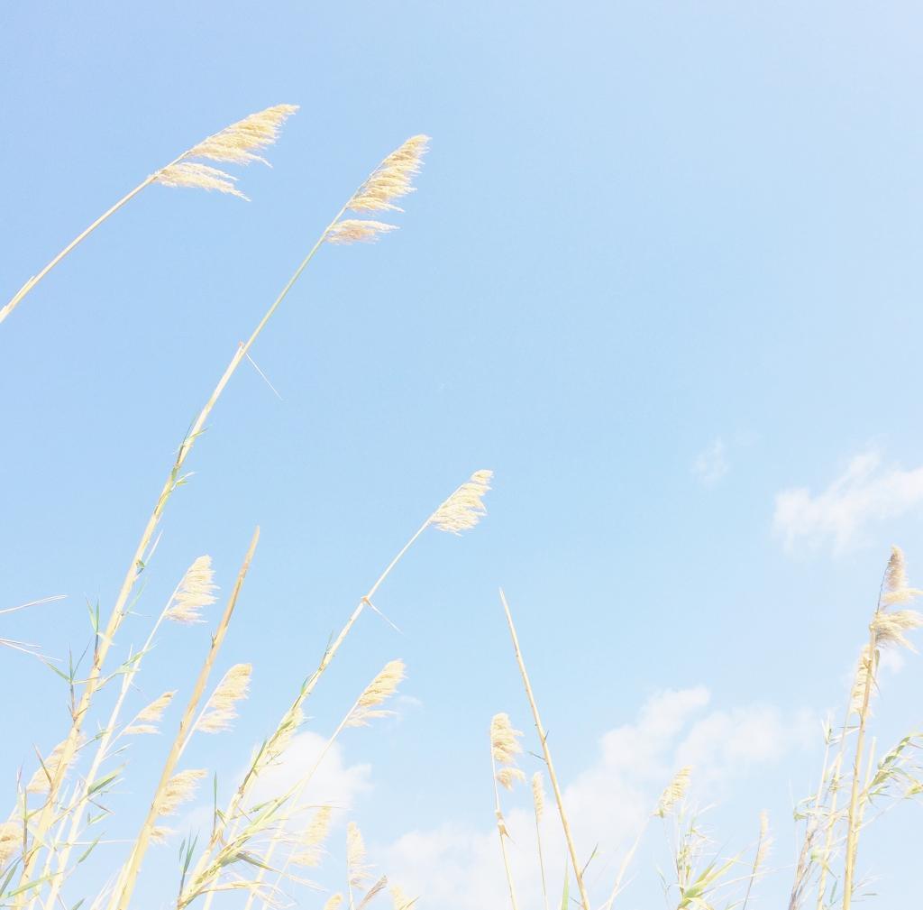 小清新蓝色天空美景