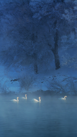 冬天烟雾缭绕湖泊唯美风景