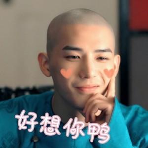 王安宇梦回搞笑文字表情包图片