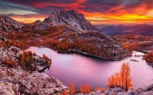 秋天枫叶黄了的梦幻意境图片